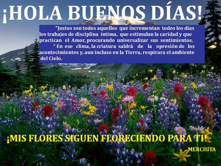campo-con-flores-de-colores