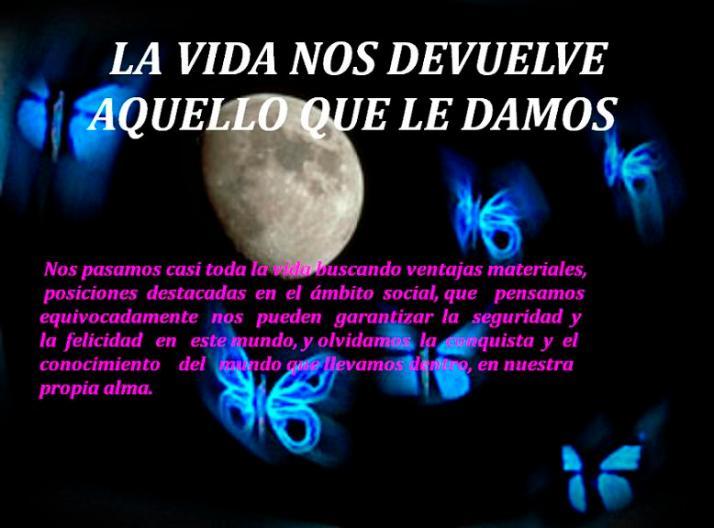 mariposas_luna