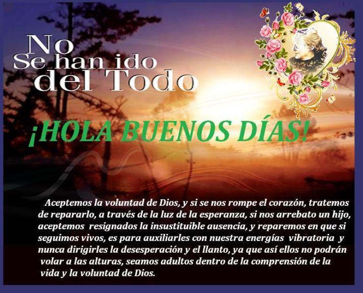 NO_SE_HAN_IDO_DE_4afc90958d935