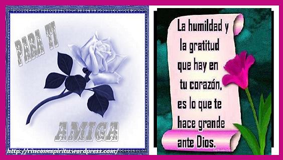 amigo_amiga_022