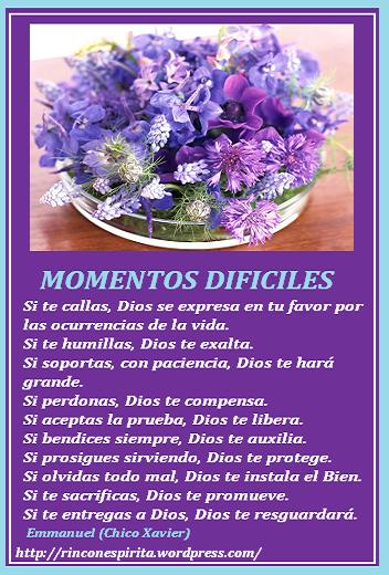 flores_059.pngmlññññ