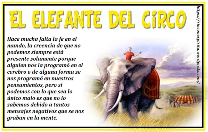 elefanteerttttt