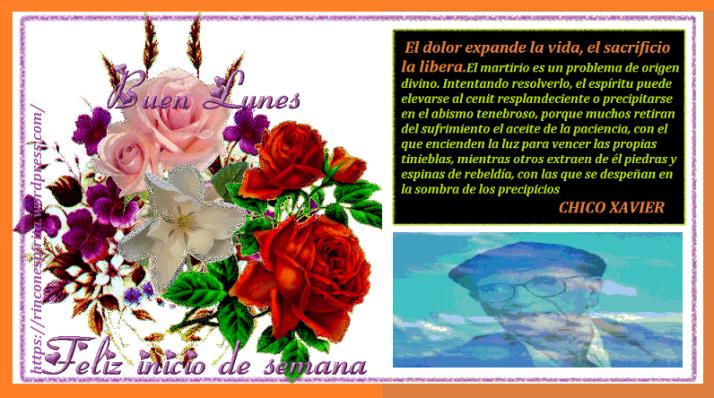 Buen-Lunes_Feliz-Inicio-de-Semana_Imagenes-de-Saludos