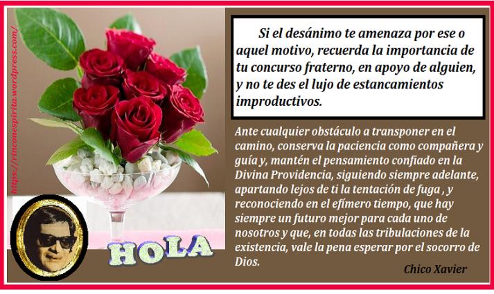 enviar_flores_rosas_1