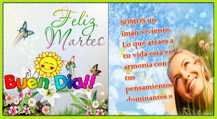 feliz-martes-postal-con-mensaje-flores-mar