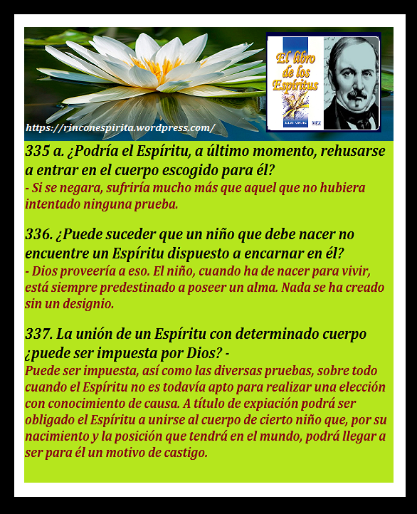 Flores Blancas 31