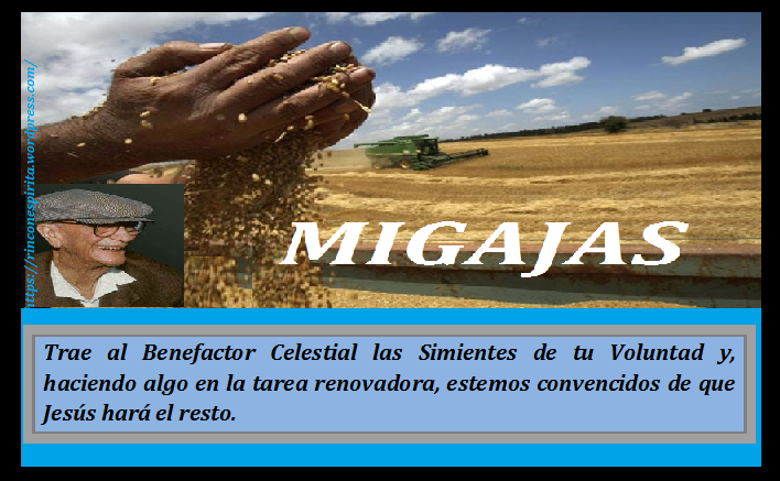 las-migajas-de-la-cosecha-m6dsdgcfh3c276423km1zidyc