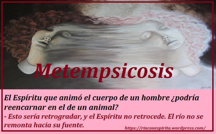 metempsicosis_by_marbellaortiz-d5z1xhb
