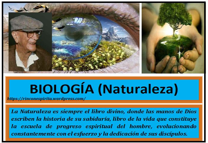 ojo_naturaleza_web.pnghjjjj