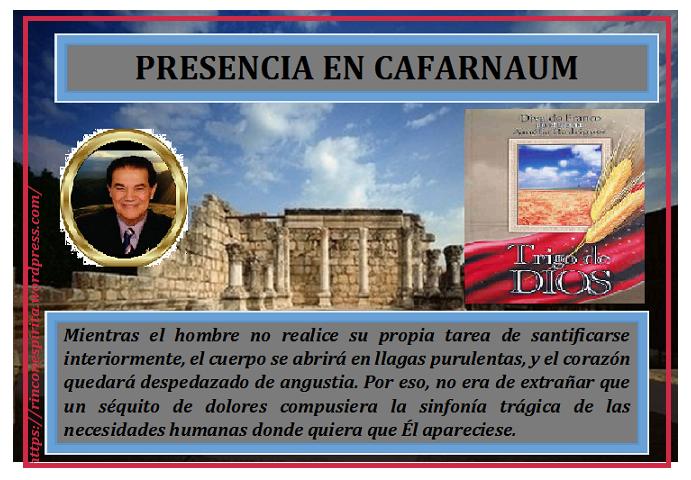 cafarnaum_03.png