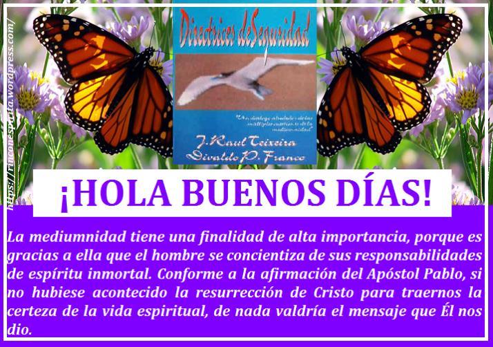 mariposas33DFGHH.png