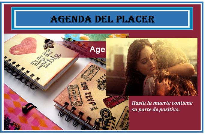 agendassdrt123
