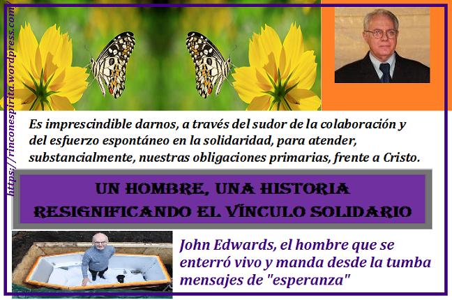 mariposa-sobre-una-linda-flor-silvestre-de-color-amarilla-butterfly