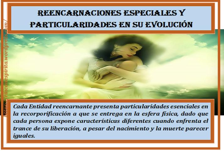 reencarnacic3b3n-01we