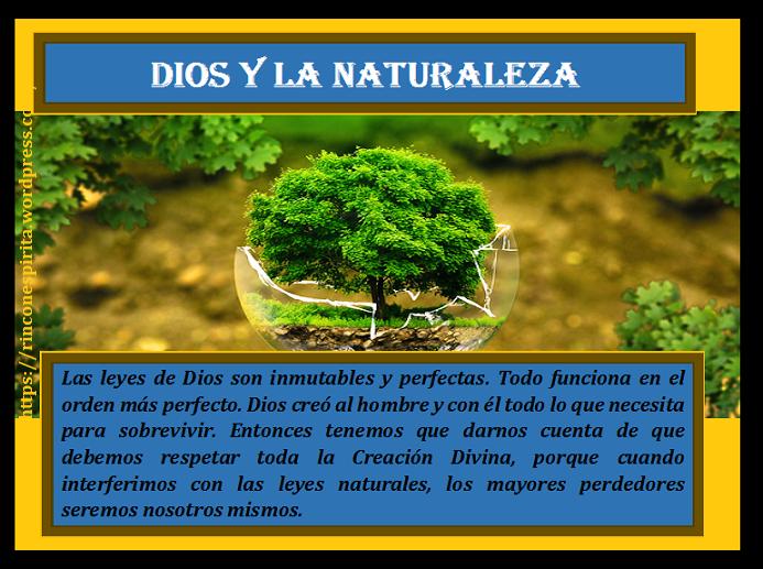 conservacion-naturaleza-4bnu.png
